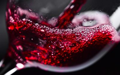 Red Wines for Winter Time